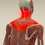neck pain begins between the shoulders, muscle stress, poor posture, perfect posture, computer hunch, lower back muscle strain, posture correction, body language, muscle stretches,online osteopathy, online osteopath, online on-demand osteopathy, osteopath, osteopathy, stretch for life, online stretching, immediate pain relief,