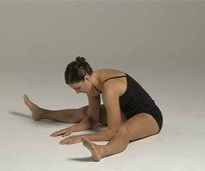 Essential Knees and Thighs Exercises