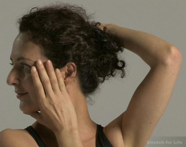 The Essential Neck Exercises