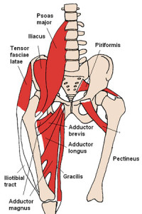 hip pain, lower back thigh diagram, what causes hip pain, pregnancy, itb, illiotibial band pain, lateral stabilisers, deep buttock muscle, muscle strain, pelvic problems, morning sickness, swelling, carpal tunnel, blood pressure, muscle strain, online osteopathy, online osteopath, online on-demand osteopathy, osteopath, osteopathy, stretch for life, online stretching, immediate pain relief,